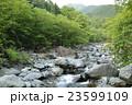早戸川 川 河川の写真 23599109