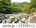 早戸川 川 河川の写真 23599111