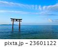 白髭神社 琵琶湖の鳥居 23601122