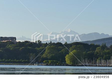 レマン湖から望むモンブラン ジュネーブ 23604956