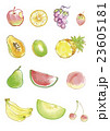 果物 23605181