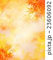 背景素材 秋 葉のイラスト 23606092