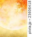 背景素材 秋 葉のイラスト 23606418