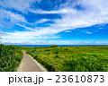 【沖縄県】万座毛 23610873