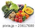 野菜 食材 緑黄色野菜の写真 23617680