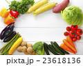 野菜 食材 緑黄色野菜の写真 23618136