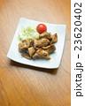 チキンティッカ 23620402
