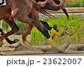 ダートレース2 23622007