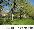 セントラルパークの風景 23626146