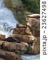 日光浴 岩場での寛ぎ 23627498