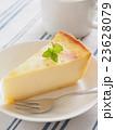 チーズケーキ 23628079