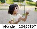砂場で遊ぶ小さな女の子 23629397