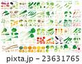 カット野菜いろいろ名称 23631765
