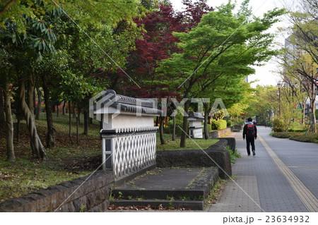 東京都立木場公園 江戸塀と新緑 歩道のジョギング 23634932