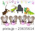 昆虫のコンサート 23635614