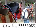 相馬野馬追い 騎馬 23639085