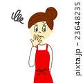 主婦 女性 人物のイラスト 23648235