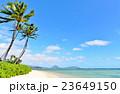 ハワイの休日 23649150