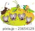 昆虫のコンサート 23654129