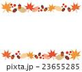秋の植物 上下フレーム 23655285