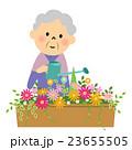 花に水やりするシニア 23655505