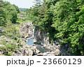 渓谷 厳美渓谷 新緑の写真 23660129