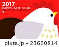 酉 とり年 鶏のイラスト 23660814