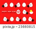 酉 とり年 鶏のイラスト 23660815