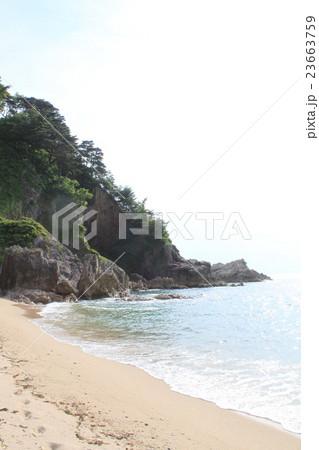 笹川流れの浜辺 23663759