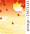 ススキと月と紅葉 23673183