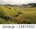 秋 棚田 田んぼの写真 23674301