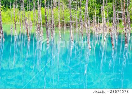 青い池 23674578