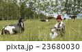 農家 ポートレート 23680030