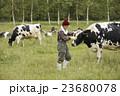 畜産 仕事風景 23680078