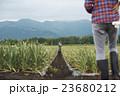 男性 2人 農家の写真 23680212