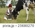 畜産 仕事風景 23680270