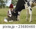 畜産 仕事風景 23680460