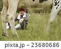 畜産 仕事風景 23680686