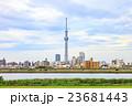 梅雨空と東京スカイツリー 23681443