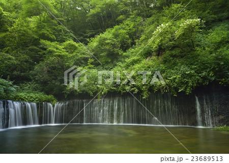 白糸の滝・軽井沢(長野県) 23689513