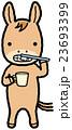 歯磨きをする馬 23693399