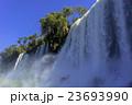 イグアスの滝 滝 激流の写真 23693990