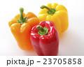 パプリカ 夏野菜 野菜の写真 23705858