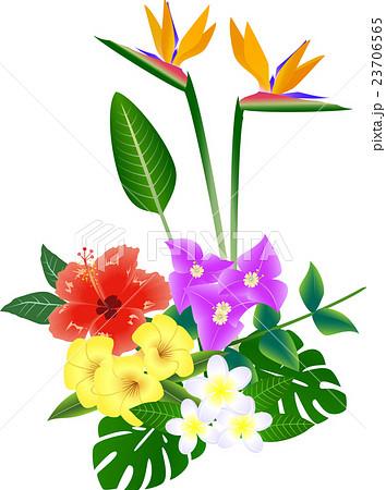 南国の花 Tropical Flowersのイラスト素材