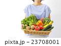 採れたての野菜 23708001