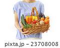採れたての野菜 23708008