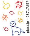 秋 紅葉 落ち葉のイラスト 23717857