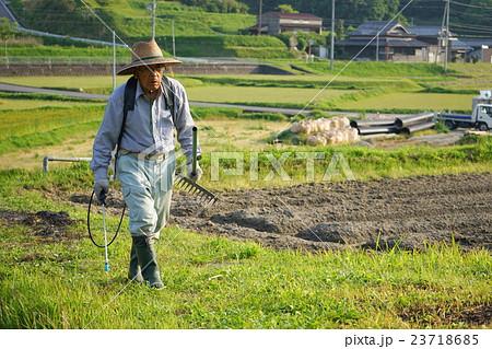 草刈機で草刈りをする高齢者 農作業 農業 おじいさん おばあさん 農家 栽培 23718685