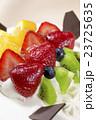 フルーツケーキのアップ 23725635