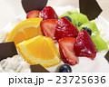 フルーツケーキのアップ 23725636
